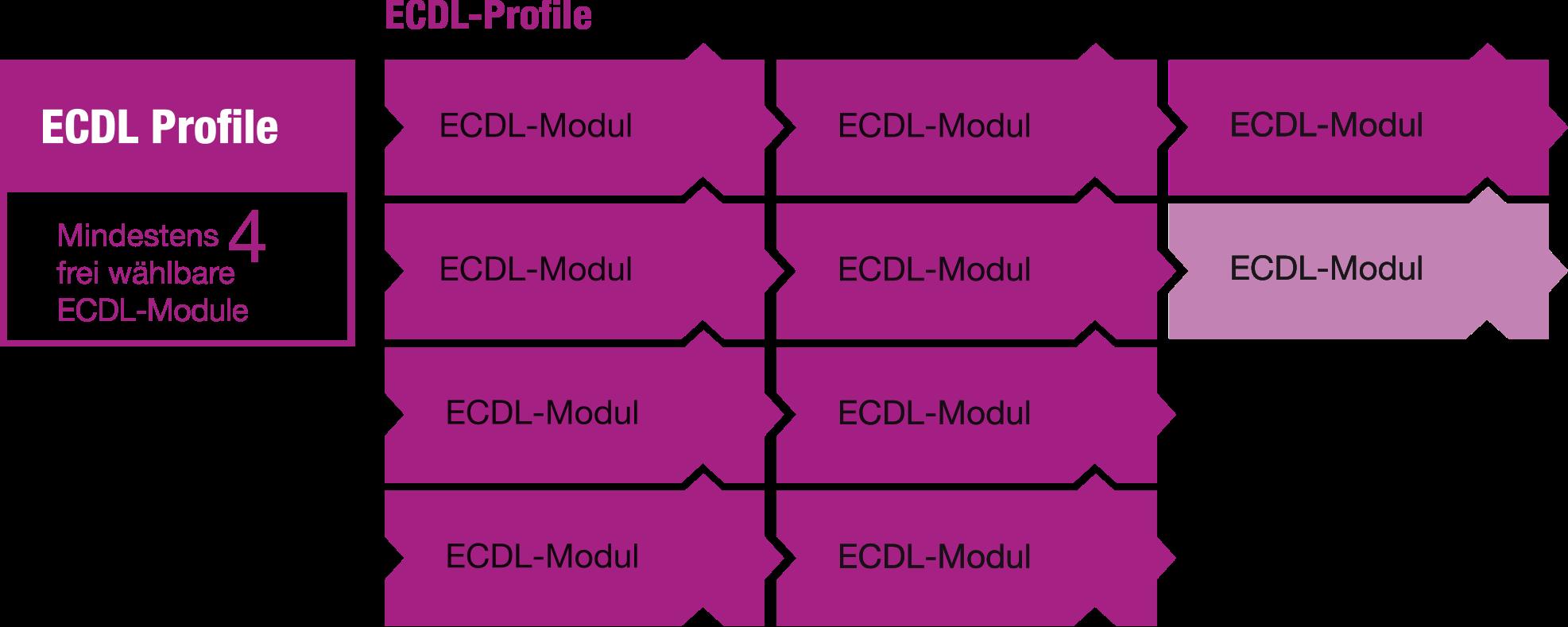 ECDL-Profile